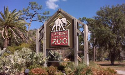 Tampa´s Lowry Park Zoo