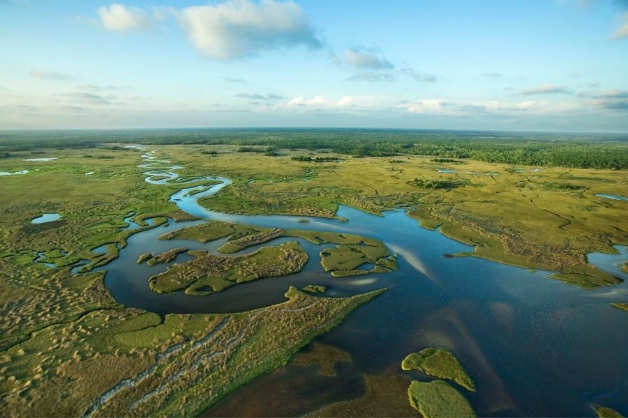 Everglades Nationalpark in Miami Florida