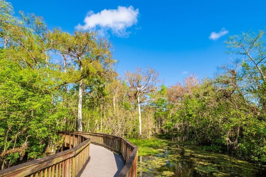 Nationalparks in Florida Big Cypress National Preserve Urlaub in Florida