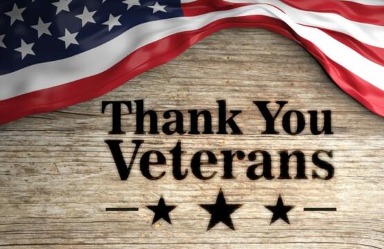 Veterans Day Cape Coral Florida USA
