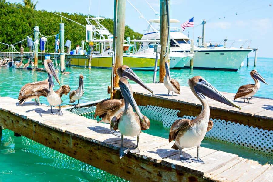 Key West Port Islamorada Florida