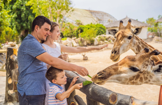Naples Zoo at Carribean Gardens